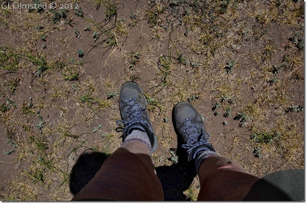 01 Gaelyn's boots by Riggs Spring Lookout Canyon FR226 Kaibab NF AZ (1024x678)