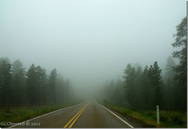 09ecr Fog SR89A S Kaibab NF AZ (1024x768)