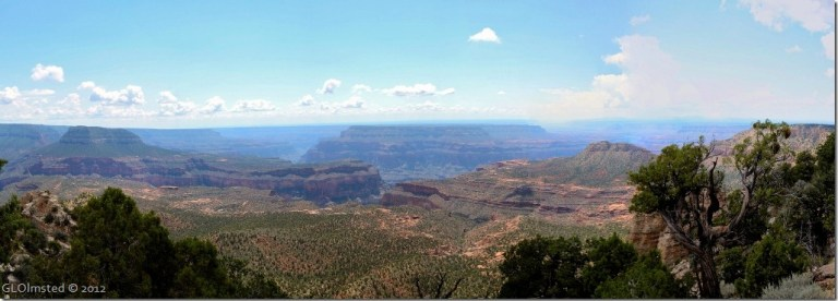 05 View S from Crazy Jug Pt Kaibab NF AZ (1024x366)
