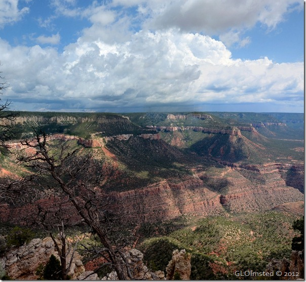 06 Stormy view SE from Crazy Jug Pt Kaibab NF AZ (1024x943)