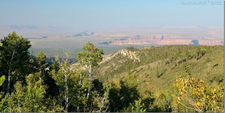 03 NE view of Colorado R & Vermilion Cliffs from Saddle Mt trailhead Kaibab NF AZ (1024x516)