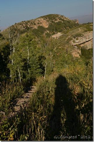 05 Gaelyn's shadow by Saddle Mt trail Kaibab NF AZ (678x1024)