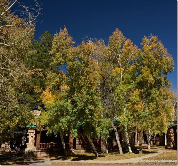 04 Fall colors by cabins NR GRCA NP AZ pano (1024x957)