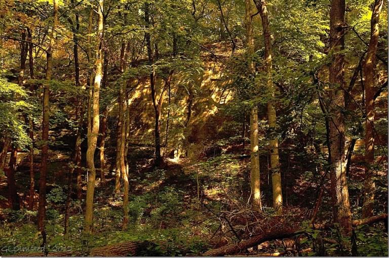 13 Light & shadow along Kaskaskia trail Starve Rock State Park IL (1024x678)