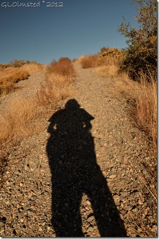 01 Gaelyn's shadow Weaver Mts Yarnell AZ (678x1024)