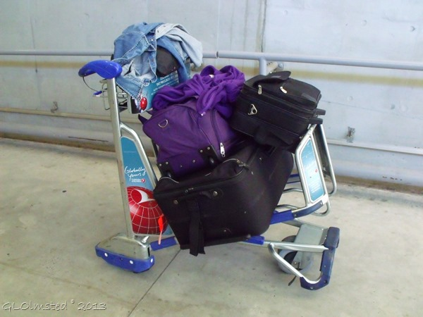 Luggage on trolley Cape Town airport SA