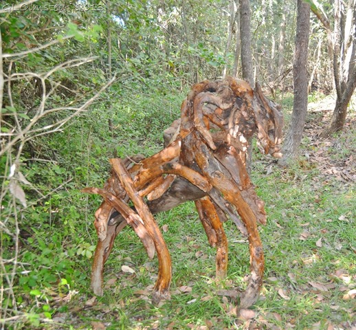 Driftwood art along Big Tree trail Wild Spirit Nature's Valley SA