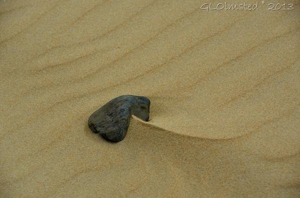Rippled & drifted sand around rock