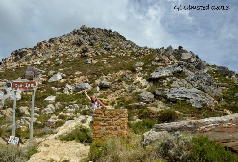 The Top Swartberg Pass SA