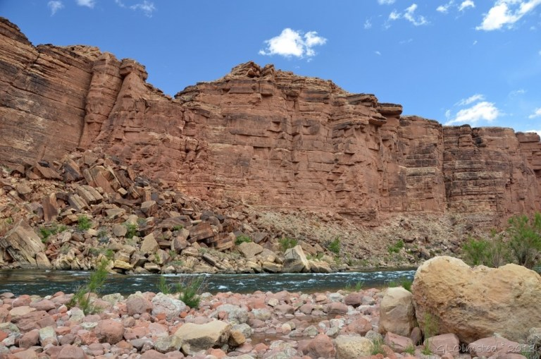 Colorado River at mouth of Cathedral Wash GRCA NP AZ