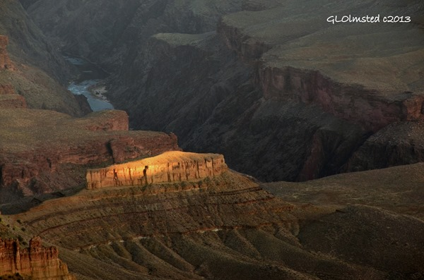 Light on temple & Colorado River from Point Sublime North Rim Grand Canyon National Park Arizona