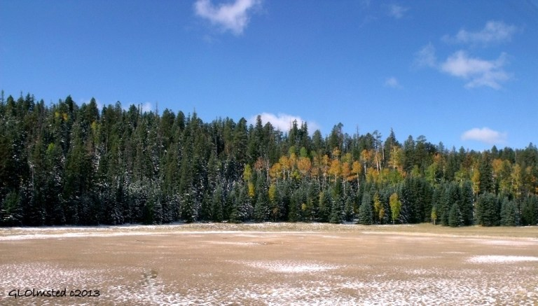 Snow & fall colors Kaibab National Forest Arizona