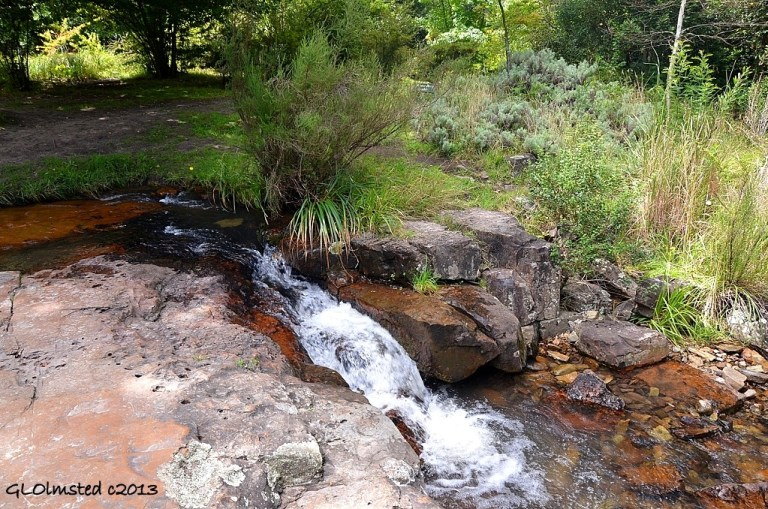 Lower waterfall Hogsback Arboretum Hogsback South Africa