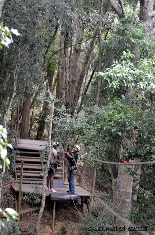 Last platform Tsitsikamma Canopy Tour Storms River South Africa