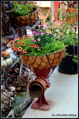 Yard art & flowers at Berta's Yarnell Arizona