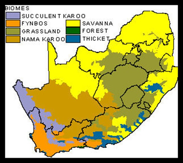 map of biomes in South Africa
