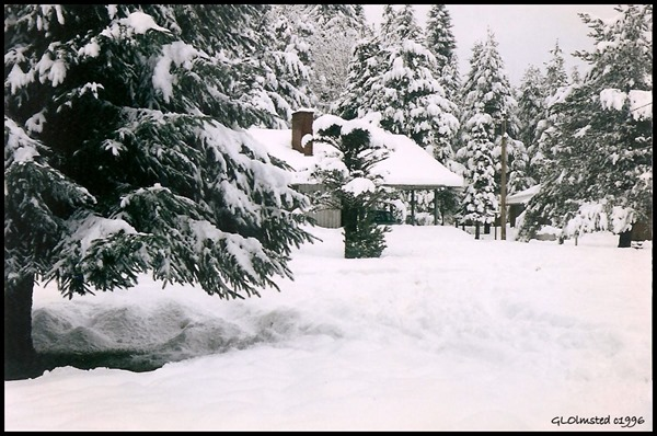 18 inches of snow 1-24-96 Pine Creek Work Station Gifford Pinchot National Forest Washington