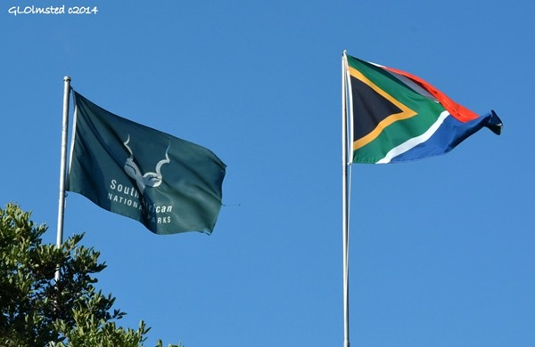SANParks & South African flags above Letaba camp Kruger National Park South Africa