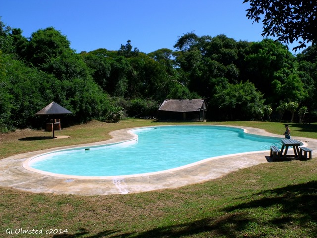 Swimming pool Sugarloaf Camp St Lucia Marine Reserve iSimangaliso Wetland Park South Africa)