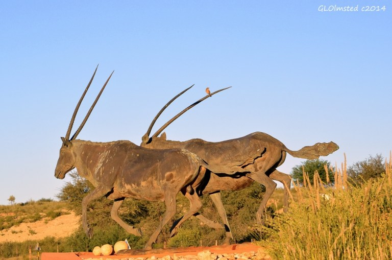 Gemsbok statue Kgalagadi National Park South Africa