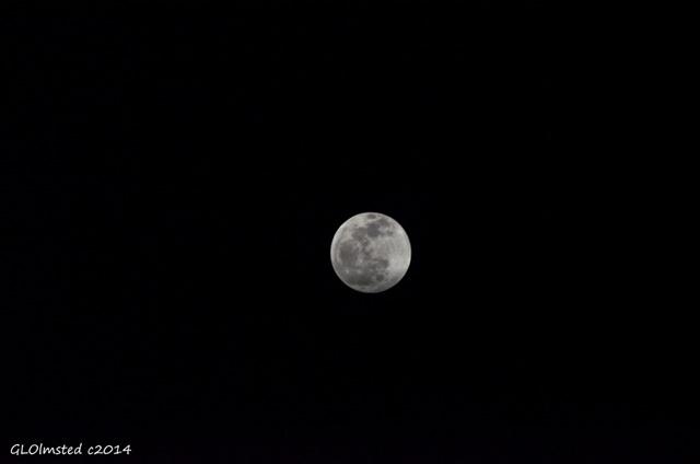 Full moon Yarnell Arizona