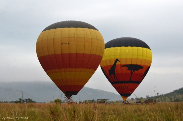 Hot air balloons Pilanesberg Game Reserve South Africa