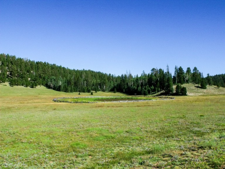 Crane Lake State Route 67 Kaibab National Forest Arizona