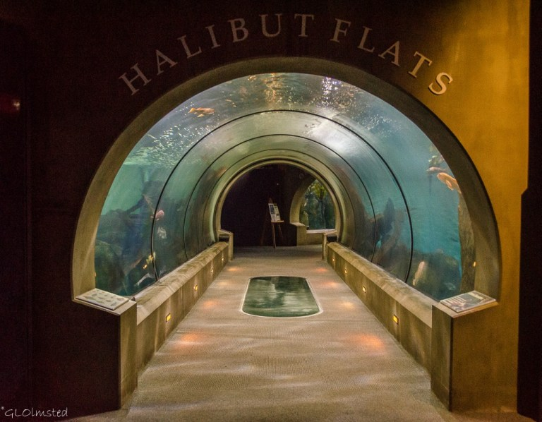Entrance Halibut Flats Passages of the Deep Oregon Coast Aquarium Newport Oregon