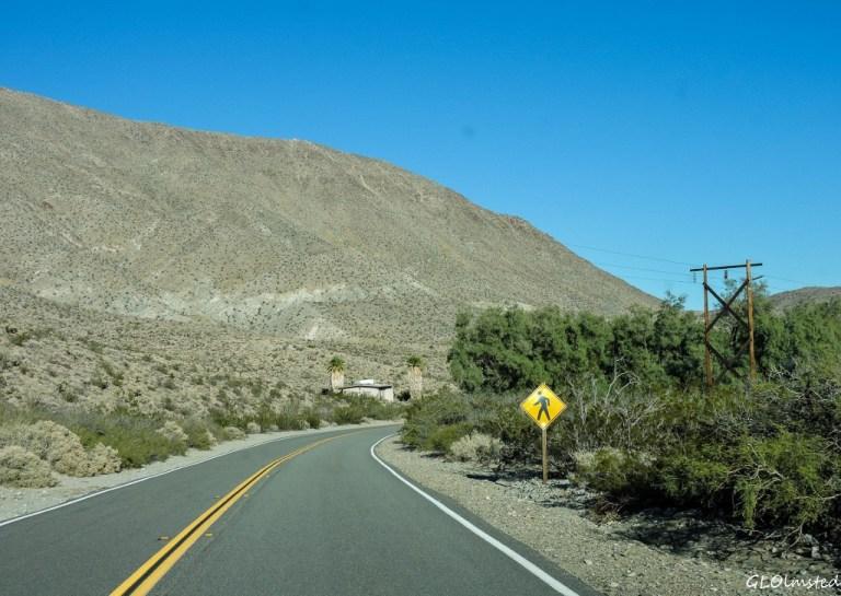 Tamarisk Grove Campground S3 Anza-Borrego Desert State Park California