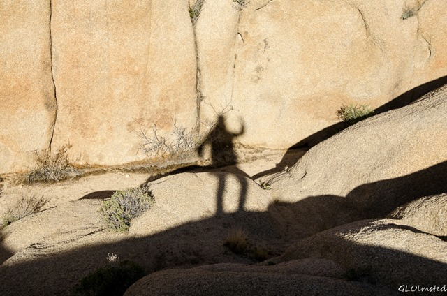 Gaelyn's shadow against boulders Jumbo Rocks campground Joshua Tree National Park California
