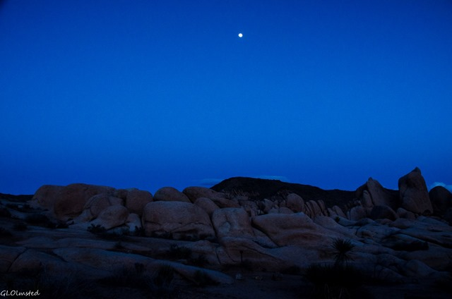 Moon over boulders White Tank campground Joshua Tree National Park California