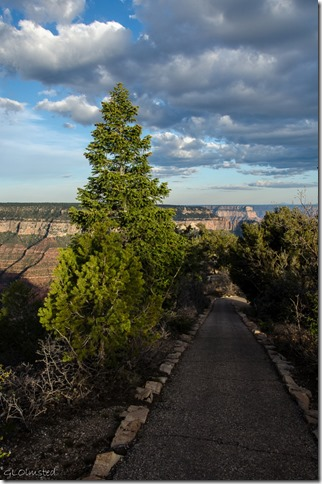 Bright Angel Point trail North Rim Grand Canyon National Park Arizona