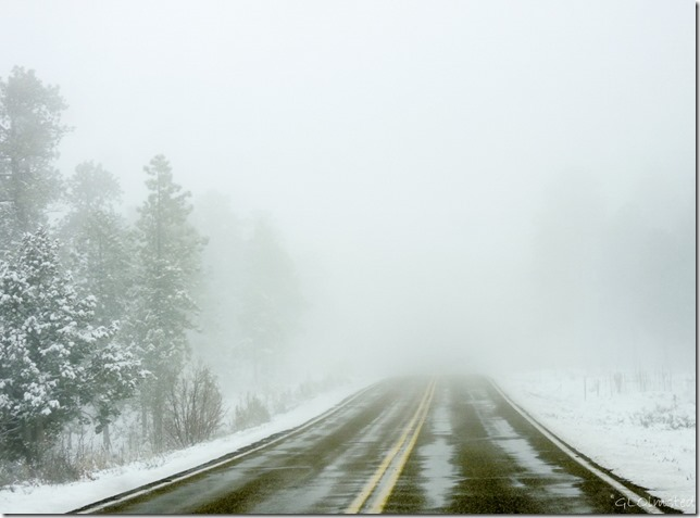 Snow & white out SR89A N Kaibab National Forest Arizona