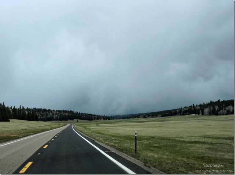 Rain clouds over meadows SR67 S Kaibab National Forest Arizona