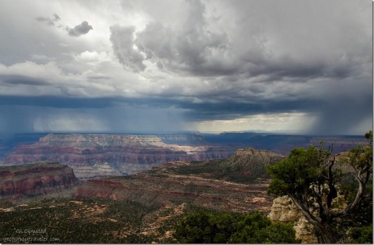 Storm to W Crazy Jug Pt Kaibab National Forest Arizona