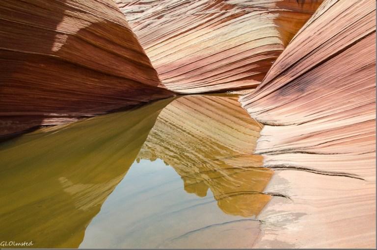 Water reflection Paria Canyon-Vermilion Cliffs Wilderness Arizona