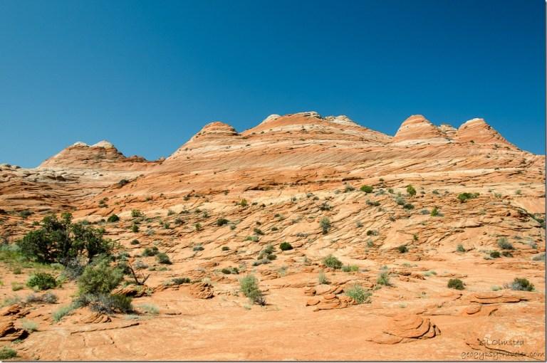 Sandstone cliffs Coyote Buttes trail Paria Canyon-Vermilion Cliffs Wilderness Utah