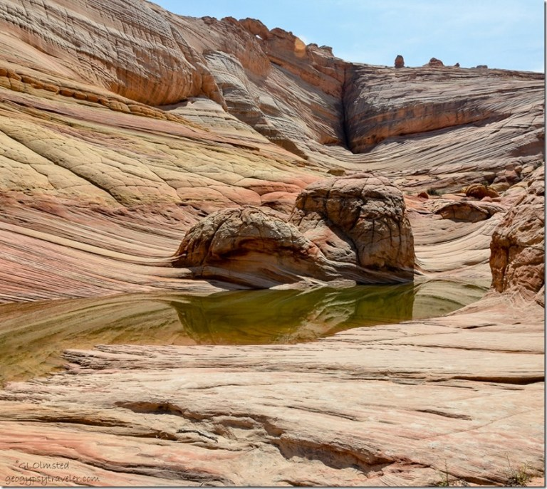 Water pool above The Wave Paria Canyon-Vermilion Cliffs Wilderness Arizona