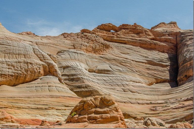 Top Rock above The Wave Paria Canyon-Vermilion Cliffs Wilderness Arizona