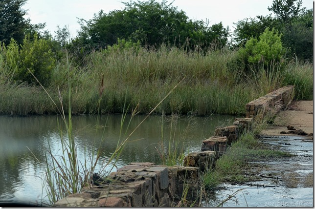 Flood debris on bridge Pilanesburg Game Reserve South Africa