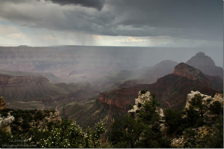 Rain in canyon & Colorado River from Walhalla overlook North Rim Grand Canyon National Park Arizona