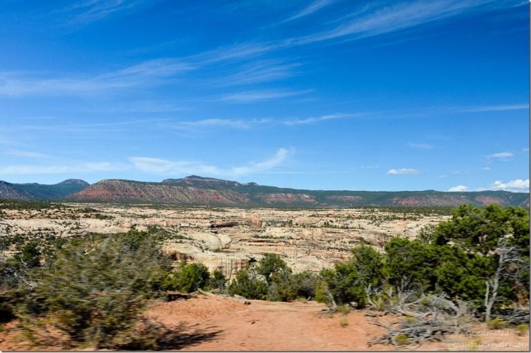 White Canyon Natural Bridges National Monument Utah