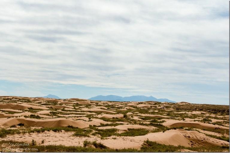 Sand dunes & Henry Mountains San Rafael desert Utah