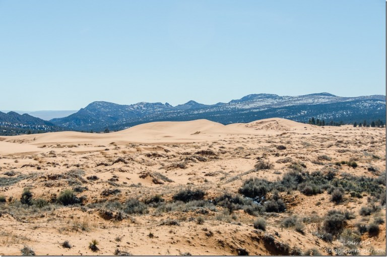 Moquith & Moccasin Mts beyond Coral Pink Sand Dunes State Park Utah