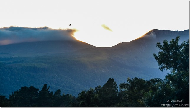 Sunrise view of Hogsbacks from Never Daunted Self-catering Cottage Hogsback South Africa