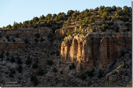 Last light Snake Gulch Kaibab National Forest Arizona