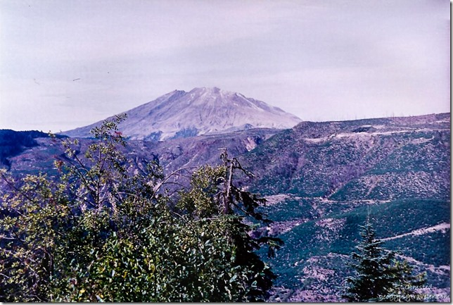 Mt St Helens National Volcanic Monument Gifford Pinchot National Forest Washington