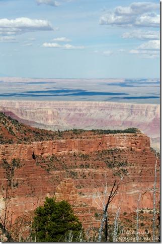 Canyon view Ken Patrick trail North Rim Grand Canyon National Park Arizona