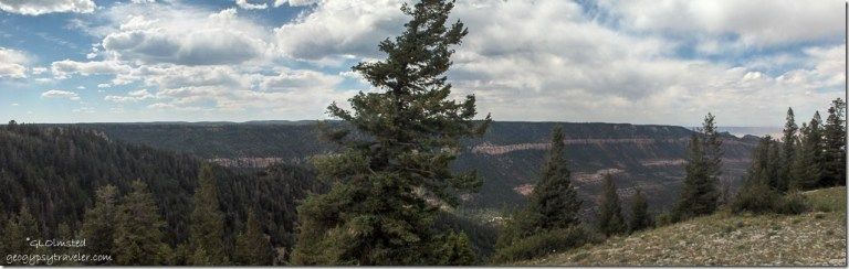 Marble viewpoint Kaibab National Forest Arizona