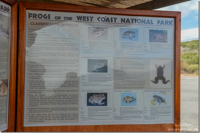 Sign for frogs of West Coast National Park South Africa